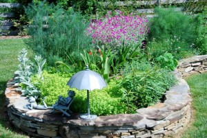 Herb bed with fresh Rosemary & Thyme