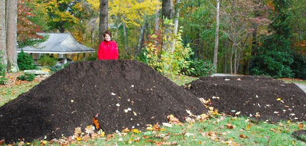 Any new garden should start with an ample amount of compost! It is by definition, this is some really incredible organic matter.